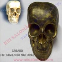 Crânio p/ Câmara de Reflexão.
